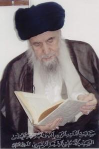 آیت الله سید محمد مفتی الشیعه